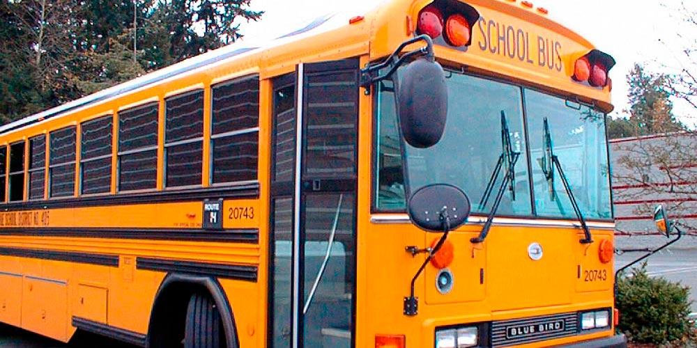 School Bus + Shuttle Bus Services